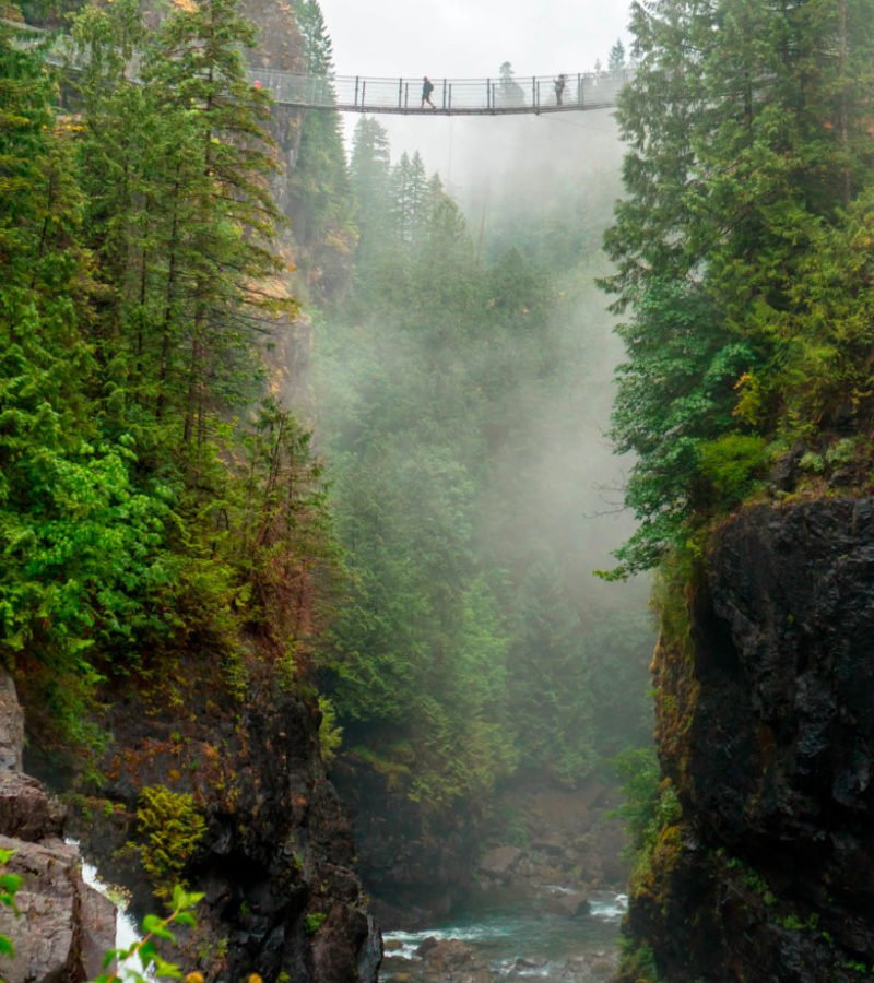Elk Falls Suspension Bridge Destination Campbell River