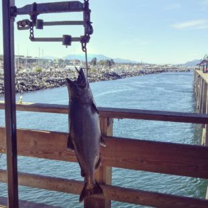 discovery-pier-hanging-fish
