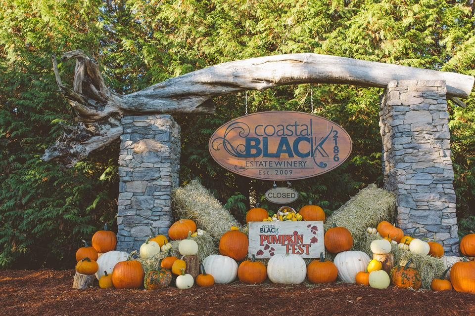 Locally Grown, Family Farms and Studio Arts. It's fall in Campbell River.