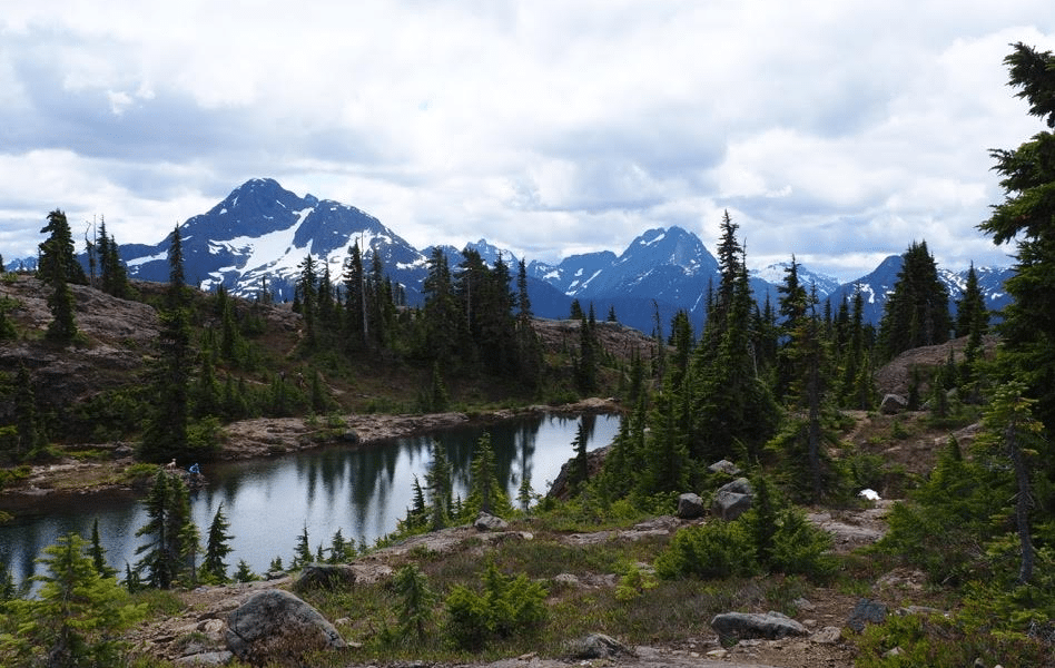 Five Hikes with Mountain Views in Strathcona Park