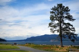 11-Dick-Murphy-Park-Campbell-River-Vancouver-Island-Ale-Trail