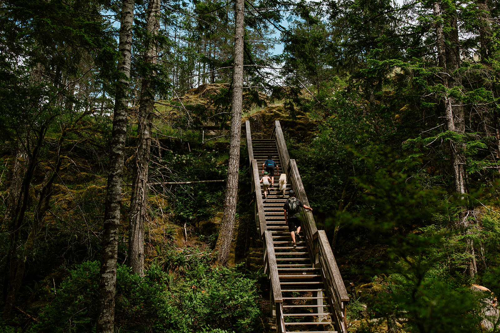 Stairs on the Ripple Rock Trail