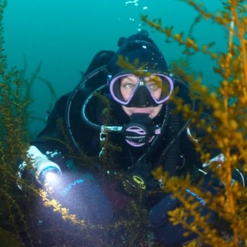 clear-water-diver-(2)