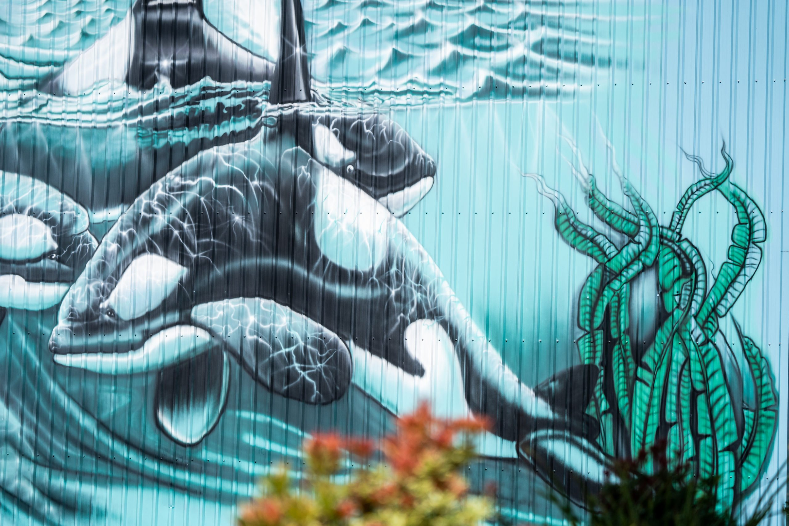 For something different, try photographing one of the many murals in Downtown Campbell River. Image credit: Tyler Cave